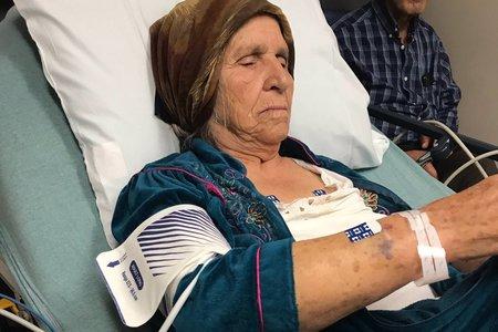 Policisti branijo uporabo taserja pri 87-letnem sirskem priseljenskem regratu, ki nabira v Gruziji
