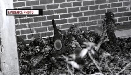 Los supervivientes de Ted Bundy se sinceran sobre el espeluznante ataque con un tronco de madera (vídeo)
