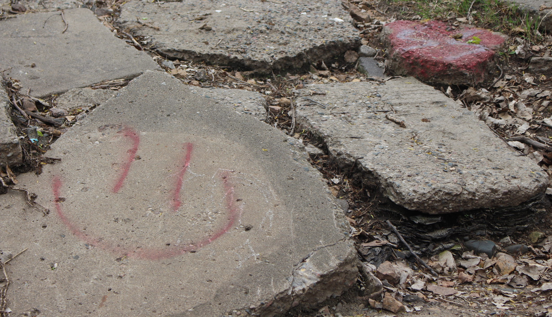 Myrdet 'Smiley Face Killers' hundreder af unge mænd, eller er det bare en myte?